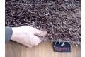 Tepgo Detail ESPRIT Hochflor-Teppich, Cool Glamour, ESP-9001-05 braun