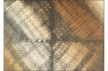 Arte Espina Atelier 4439-36 Braun/ Beige