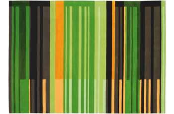 Arte Espina Joy 4066 170 x 240 cm grün Farbe 61