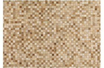 Arte Espina Pioneer 8021-16 170 x 240 cm beige