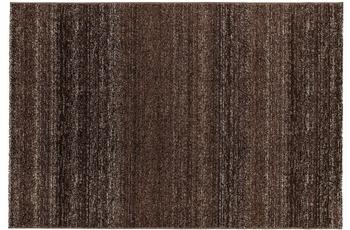 Astra Carpi Des.150 Farbe 64 dunkelbraun