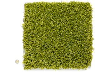 Astra , Teppich, Palermo, Col. 030 grün, Hochflor, 50 mm Florhöhe
