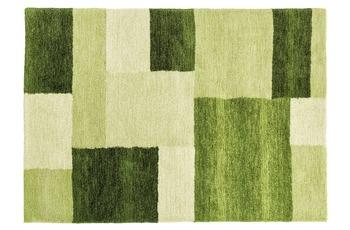 Astra Teppich Livorno Des. 151 Col. 030 grün