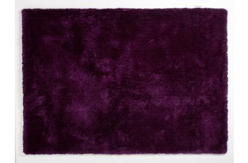 colourcourage aubergine 200 x 300 cm