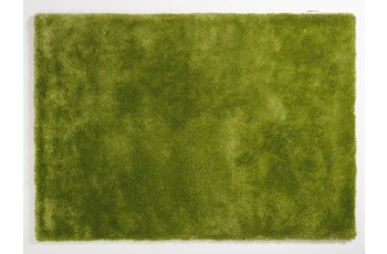 colourcourage sapgreen 200 x 300 cm