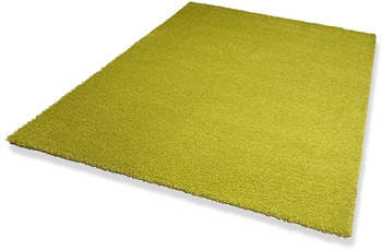 DEKOWE Hochflor-Teppich, Wellness, gr�n, 22 mm Florh�he
