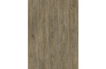 JOKA Designboden 330 - Farbe 2831 Stone Washed Oak