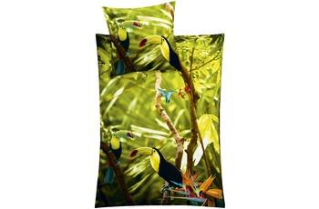 Kleine Wolke Bettwäsche Tukan, Multicolor
