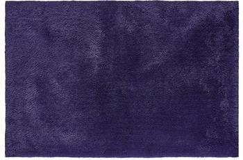 Obsession Sanzee 650 purple
