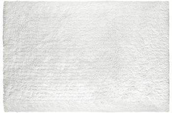 Obsession Sanzee 650 white