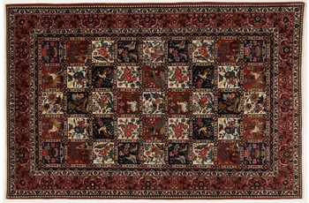 Oriental Collection Bakhtiar Perser Teppich, 215 x 323 cm