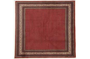 Oriental Collection Teppich, Sarough Mir, Perser, handgeknüpft, reine Schurwolle, 216 x 225 cm
