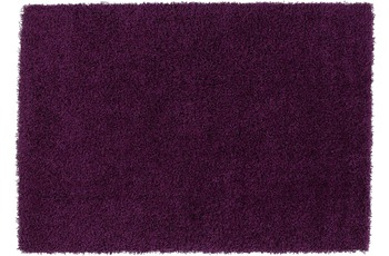 ThinkRugs Teppich Vista 2236 Purple