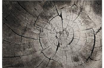 Wecon home Teppich, Wild Oak, WH-2868-957