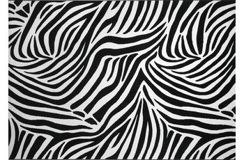 Wecon home Teppich, Zebra, WH-0729-01