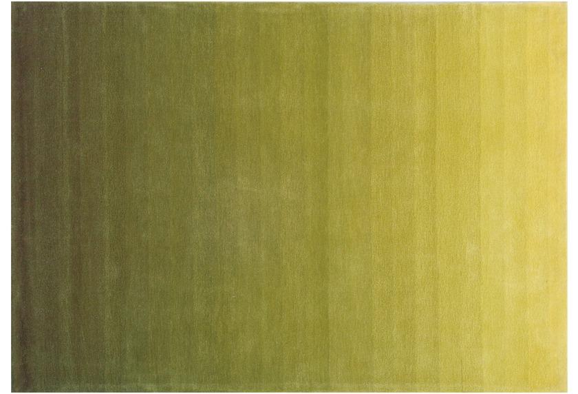 Arte Espina Dynamic 365 grün Teppich bei tepgo kaufen