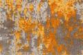 JAB Anstoetz Teppichboden Kalahari 3725/348 Velours