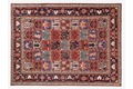 Oriental Collection Bakhtiar-Felder 245 cm x 332 cm