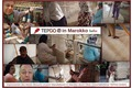 TEPGO in Marokko Tuaroc Berberteppich gemustert, Beni Ourain Midar 02, terrakotta