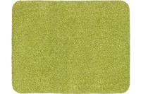 Astra Fussmatte Entra Saugstark grün