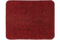 Astra Fussmatte Entra Saugstark rot 60x75cm