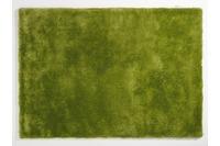 colourcourage sapgreen