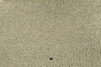 JAB Anstoetz Teppichboden Charmy Plus 3662/ 541