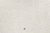 JAB Anstoetz Teppichboden Cloud 3667/ 193