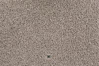 JAB Anstoetz Teppichboden Cloud 3667/ 425