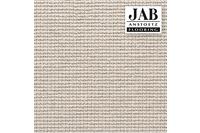 JAB Anstoetz Teppichboden Cross 292