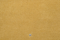 JAB Anstoetz Teppichboden Heaven 3691/ 144