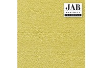 JAB Anstoetz Teppichboden Infinity 245