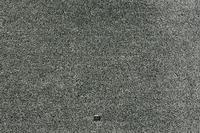JAB Anstoetz Teppichboden Wind 3669/ 694