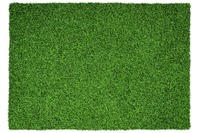 Kayoom Teppich Grass 110 Grün