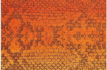 Arte Espina Teppich Flash 2708 Orange 120 x 170 cm
