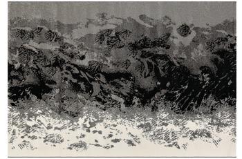 Arte Espina Teppich Move 4472 Grau 60 x 110 cm