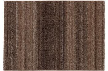 Astra Carpi Des.150 Farbe 60 braun 133x190cm