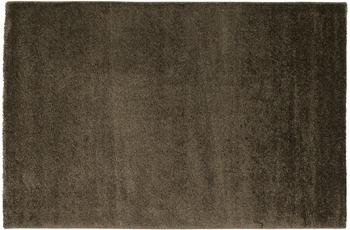 Astra Ravello Design 170, Farbe 084 taupe 80 x 150 cm