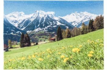 Astra Türmatte Deco Print D. 202 Alpen 50x70 cm