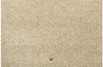 JAB Anstoetz Teppichboden Champ 3703/ 074