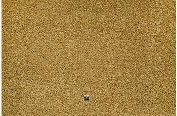 JAB Anstoetz Teppichboden Diamonds 3672/ 342