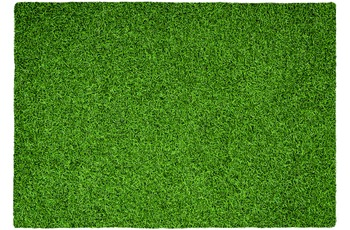 Kayoom Hochflor-Teppich Grass 110 Grün 120cm x 170cm