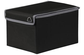 Kleine Wolke Volta Box, Schwarz