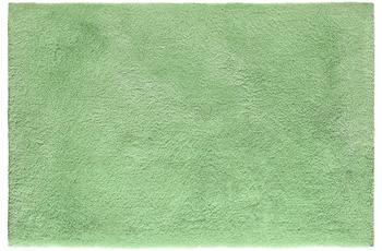 Obsession Teppich Sanzee 650 mint 80 cm x 150 cm