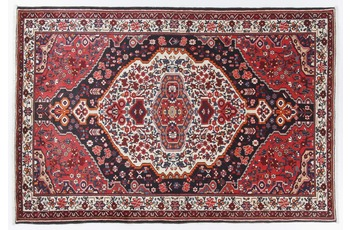 Oriental Collection Bakhtiar Teppich  170 x 255 cm