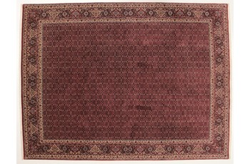 Oriental Collection Bidjar Teppich Bukan 299 x 398 cm