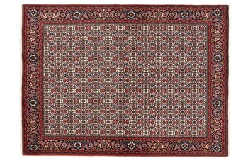 Oriental Collection Bidjar 173 cm x 237 cm