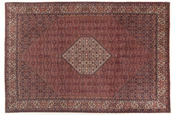 Oriental Collection Bidjar 200 cm x 305 cm