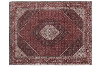 Oriental Collection Bidjar 253 cm x 342 cm