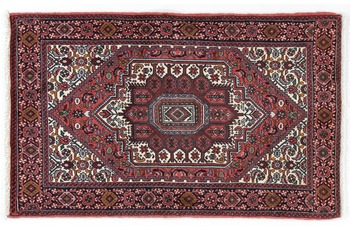 Oriental Collection Goltuch 78 cm x 125 cm